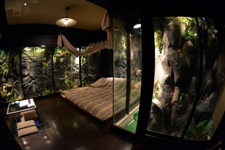 a jungle style room of a love hotel called