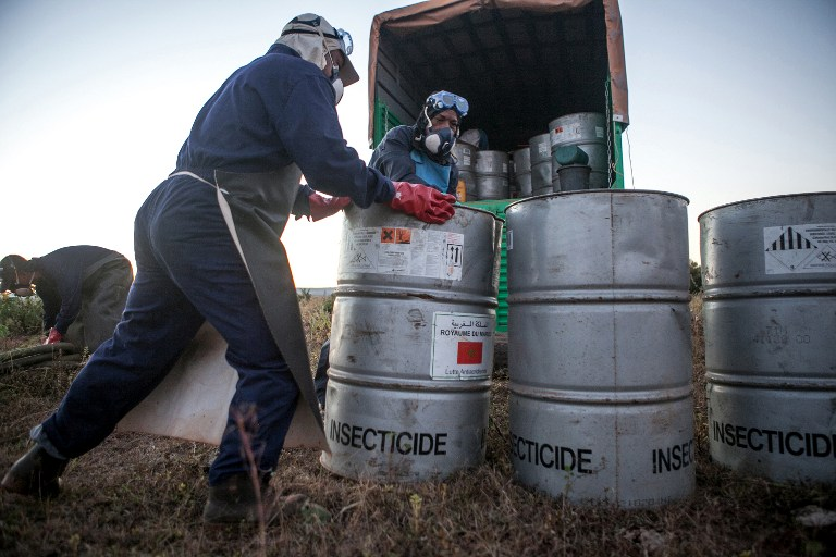 Members of the technical team of the Food and Agriculture Organization of the United Nations (FAO), prepare insecticide for a helicopter equipped for pesticide spreading