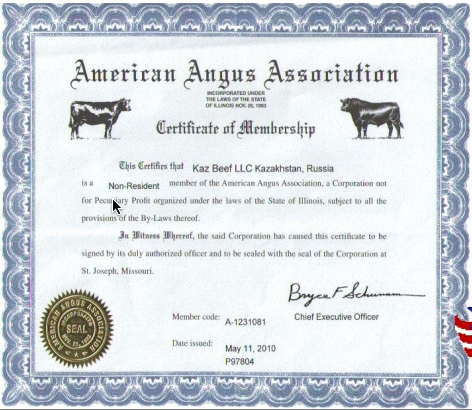 KazBeef's operation consists of both Black Angus and Hereford cattle from the United States.