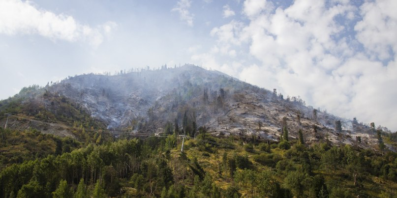 Mokhnatka mount after fire