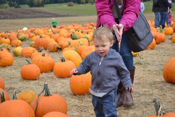 Ethan frolics in a pumpkin patch just before Halloween of 2012. Photo courtesy of Angie Foster