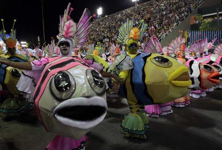 Reveller of the Grande Rio samba school. ©Reuters