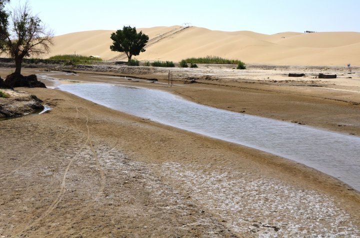 The river called Tarim is unusual. It migrates all the time and shifts the location of Lop Nor lake with it. Now, the lake has gone shallow due to various factors. Photo ©Dzhaliya Dzhaidakpayeva
