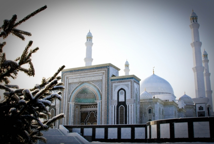 The New Mosque covers the area of 110 thousand square meters