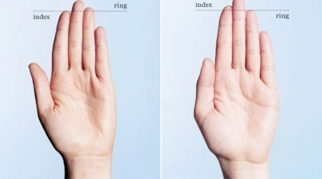 Length of your ring and index fingers could reveal your