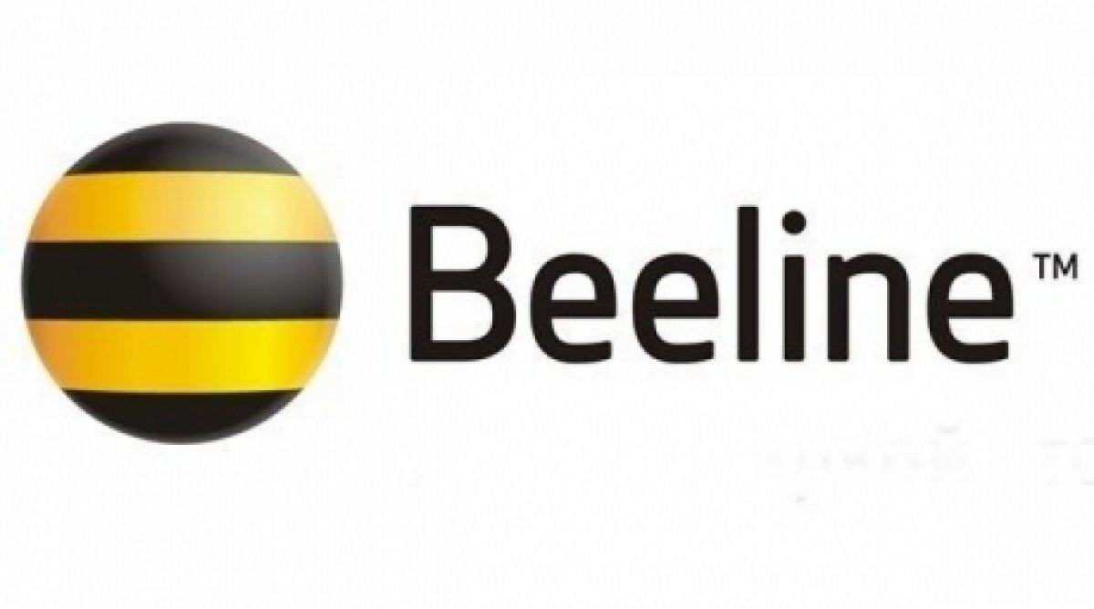 How to connect roaming on Beeline
