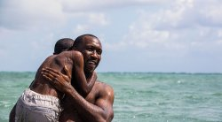 """Moonlight"" to top Spirit Awards nominations"